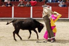 Feria de Abril (4)