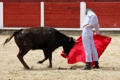 Feria de Abril (9)
