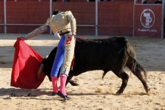San Martín de la vega (11)