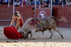 San Martín de la vega (16)