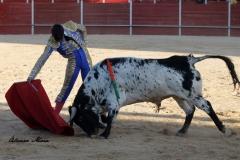 San Martín de la vega (20)