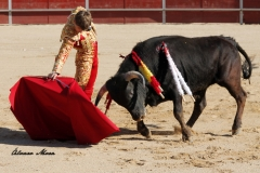 San Martín de la vega (5)